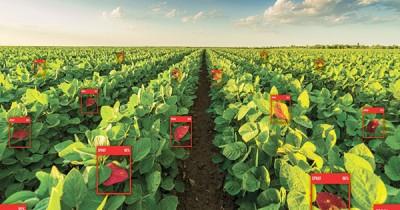 농업도 인공지능 시대 준비해야... 글로벌 농업 AI시장, 오는 2028…